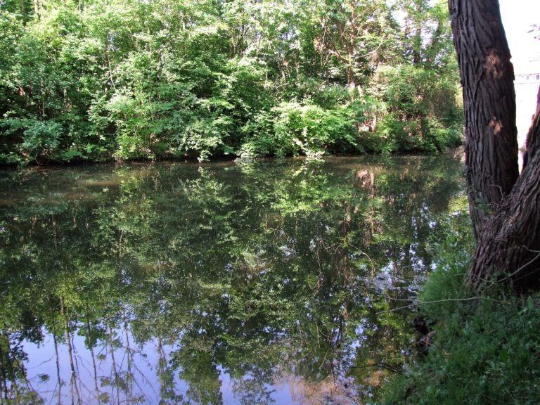 Der Teich am Mühlengraben. (Foto: Uli Klein)