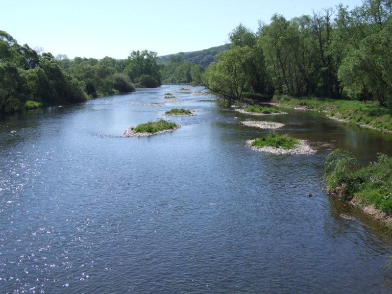 Flussabschnitt der renaturierten Eder. (Foto: Uli Klein)