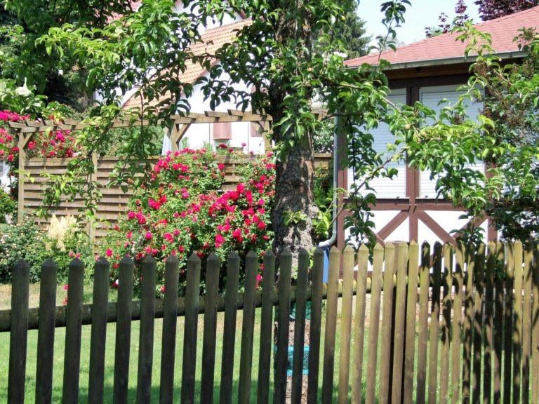 Blütenpracht in einem Garten. (Foto: Uli Klein)