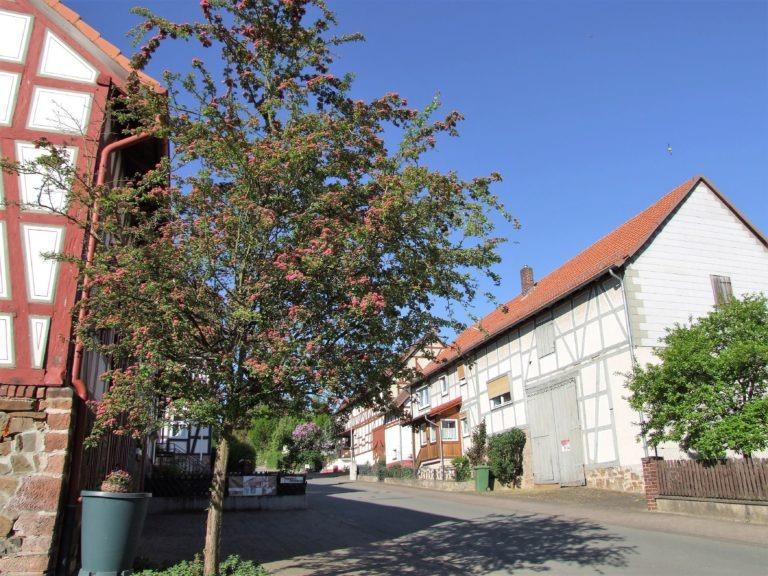 Die Fünfseenblick Straße. (Foto: Uli Klein)