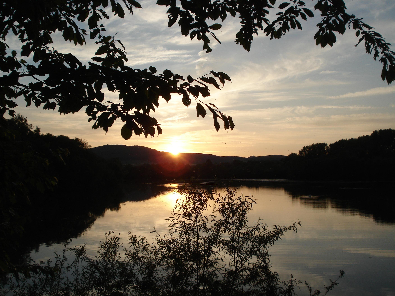 Abendstimmung im Naturschutzgebiet Schwimmkaute. (Foto: Uli Klein)