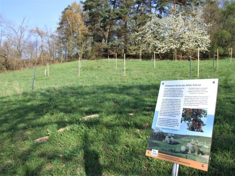 Natur- und Artenschutz am Sengelsberg. (Foto: Uli Klein)
